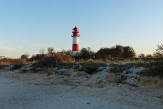 Der Leuchtturm vom Falshöfter Strand aus gesehen