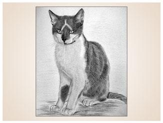 auftragsmalerei-inna-bredereck-kunstwerk-portrait-kaetzchen-dreieck-fellmaserung-kater