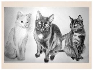 auftragsmalerei-inna-bredereck-kunstwerk-portrait-katzentrio-black-and-white