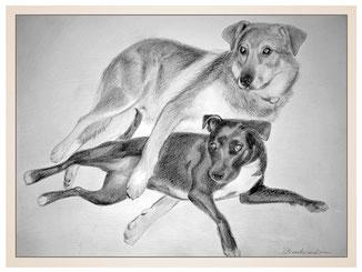 auftragsmalerei-inna-bredereck-kunstwerk-portrait-beste-freunde-hundepaar-liegend-schwarz