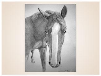 auftragsmalerei-inna-bredereck-kunstwerk-pferdeportrait-hufe-nuestern-blaesse