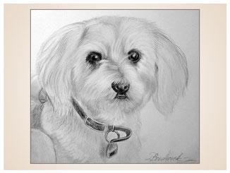 auftragsmalerei-inna-bredereck-kunstwerk-portrait-hundedame-halsband-hund