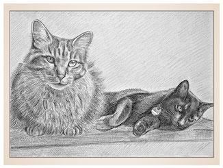 auftragsmalerei-inna-bredereck-kunstwerk-portrait-schildchen-katzenduo-beste-freunde-kater