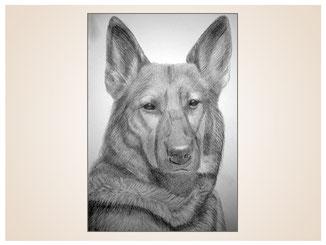 auftragsmalerei-inna-bredereck-kunstwerk-portrait-deutscher-schaeferhung-schnauze-hundekopf