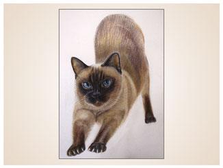 auftragsmalerei-inna-bredereck-kunstwerk-portrait-siamkatze-kater-strecken