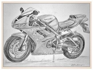 auftragsmalerei-inna-bredereck-kunstwerk-gegenstaende-gegenstandsmalerei-triumph-675-sportmotorrad