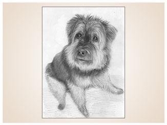 auftragsmalerei-inna-bredereck-kunstwerk-portrait-kleiner-hund-schnauzer-sitzend