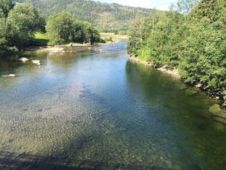 Lachs angeln Norwegen, in großen Flüssen, in Straumen in Meeresbuchten mit Fliege und Blinker, hier kleiner Fluss