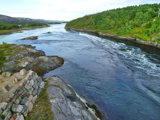 Lachs angeln Norwegen, in großen Flüssen, in Straumen in Meeresbuchten mit Fliege und Blinker, hier Straumen