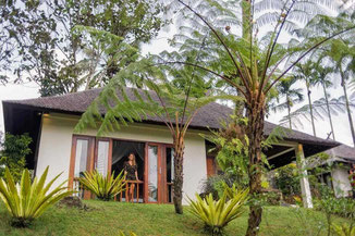 Mountain resort for sale just about half an hour driving North of Ubud.