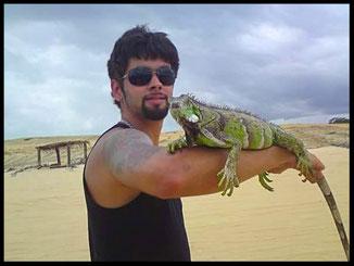 Grüner Leguan (Brasil 2007)