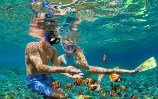 Tauchen & Schnorcheln auf Mauritius