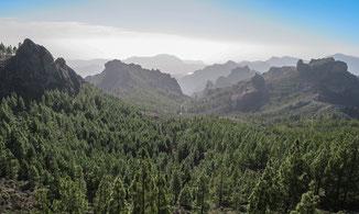 Erlebe Deinen exklusiven Urlaub auf Gran Canaria | Die Reiserei, Dein Reisebüro in Berlin & Brandenburg