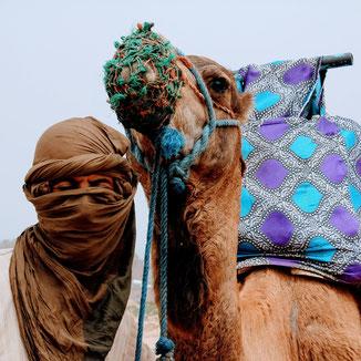 Kamel und Marokkaner