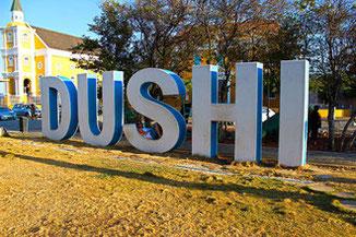 dushi-urlaub-curacao-villa-ferienhaus-pool-karibik