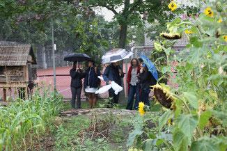 Die Gäste sind begeistert vom Schulgarten...