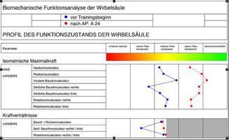 * Denner A.: Analyse und Training der wirbelsäulenstabilisierenden Muskulatur. Springer Verlag, Berlin, Heidelberg, New York (1998).