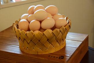 農林水産大臣賞を受賞した袖ヶ浦の北川鶏園「ぷりんセス・エッグ」