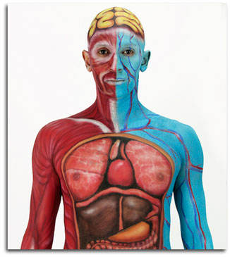 body paint, body painting para empresas, para promociones, fiestas, eventos,