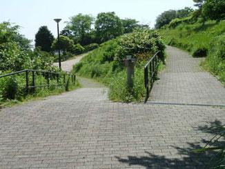 横浜市・本牧山頂公園の頂上付近