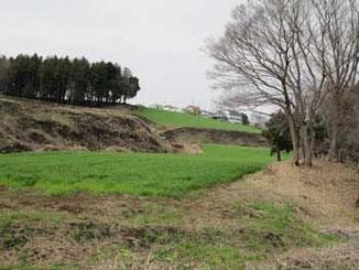 境川遊水地公園の周辺の丘