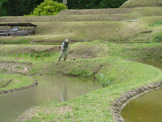 神奈川県・田植えの準備をする葉山の棚田