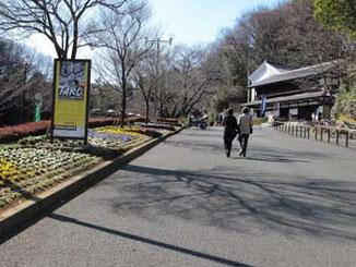 川崎市・向ヶ丘遊園の生田緑地