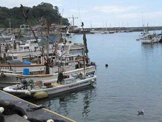 神奈川県・真鶴漁港の岸壁につながれた漁船