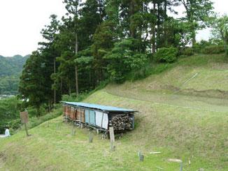 神奈川県・中腹付近の葉山の棚田