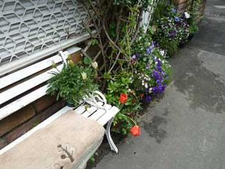 鎌倉市・腰越海岸の花のあるベンチ