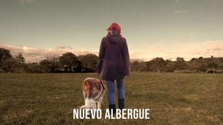NUEVO ALBERGUE PROTECTORA APASA