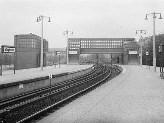 42 Minuten Hamburg, Ringlinie, U3, Hochbahn, Julius Horn, Julian Jasper, Hamburger Straße, Freundlich & Kompetent