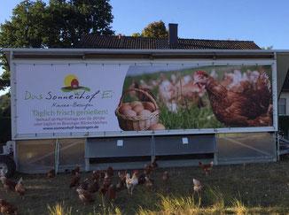 Unser neues Werbebanner gefällt nicht nur den Hühnern :-)