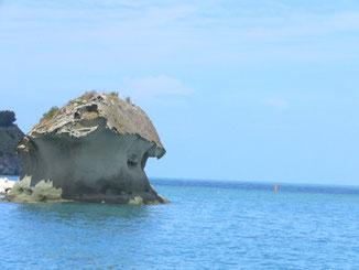名物、キノコ岩なり。