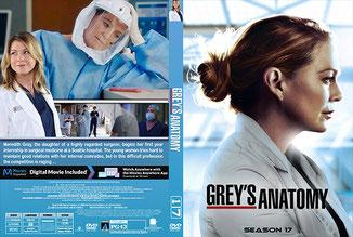Greys Anatomy Season 17 (English)