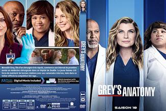 Greys Anatomy Saison 18 (Français)