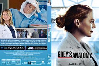 Greys Anatomy Saison 17 (Français)