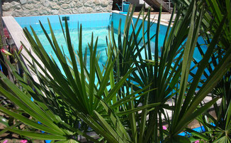Pool Ansicht mit Pflanze © Ferienwohnung Spilinga | Tropea | Kalabrien - Casa Belle Vacanze