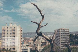 Street Photography Marseille, Street Scene Marseille, Marseille Street Photography, Marseille Photography