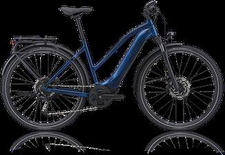 E-Bike Trekking GIANT Explore