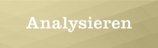 Franzelli AG, Marco Franzelli, Versicherung und Vorsorge, Luzern, Analysieren, Vorsorgesituation
