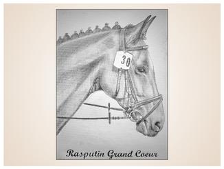 auftragsmalerei-inna-bredereck-kunstwerk-pferdeportrait-pferdehalfter-ohren-frisiert-pferdekopf