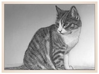 auftragsmalerei-inna-bredereck-gemaelde-katze-kater-kohlezeichnung-katzenportrait-kunstwerk