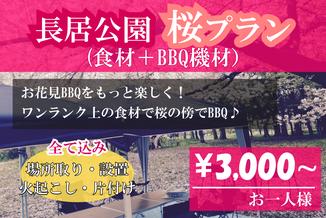 長居公園手ぶらBBQ桜プラン