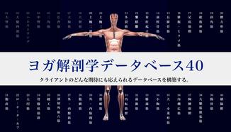 プロフェッショナルのためのヨガ解剖学講座