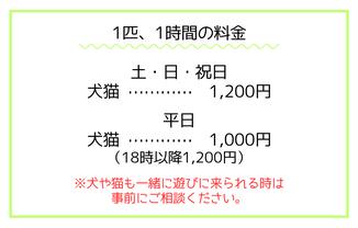 犬や猫を連れてくる料金は1000円です