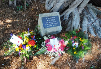 Wells memorial tree in Eumundi on ANZAC Day