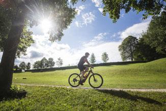 Bei einem Beratungsgespräch in einem der e-motion e-Bike Shops können Sie alles über Zubehör zum Trekking e-Bike erfahren