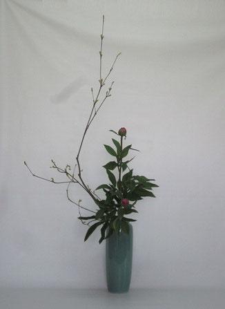 2014.5.19 瓶花         by Kumikoさん