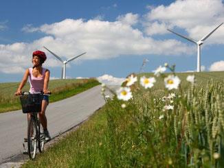 Leuke busreis fietsvakantie in Denemarken, online boeken!